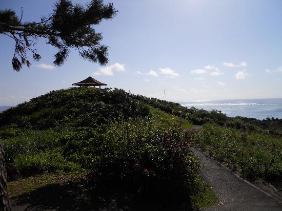 Sea Forest: すぐそこは玉取展望台