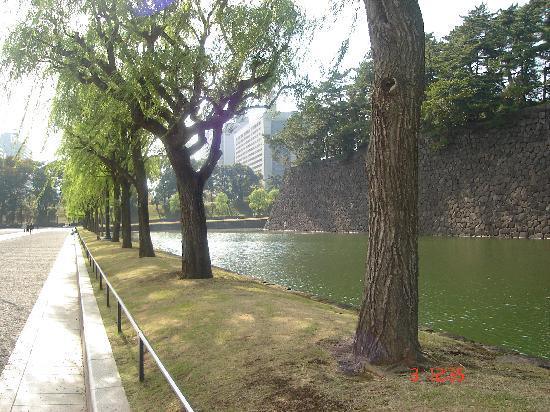พระราชวังโตเกียว: Outside