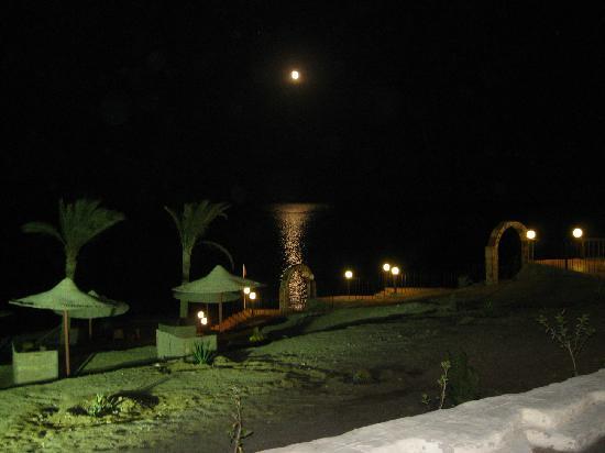 CLUB CALIMERA Habiba Beach: di sera all'habiba sul mare