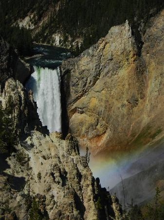 Dunraven Lodge : yellowstone canyon
