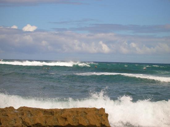 Paia, HI: Surf