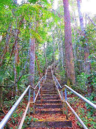 Gunung Raya: Great stairway!