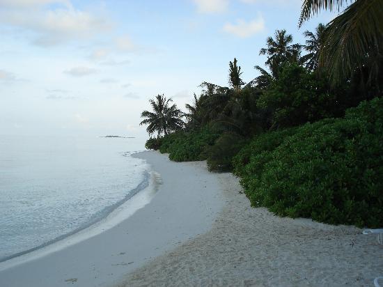 บันโดส ไอแลนด์ รีสอร์ท: Bandos Island, Maldives