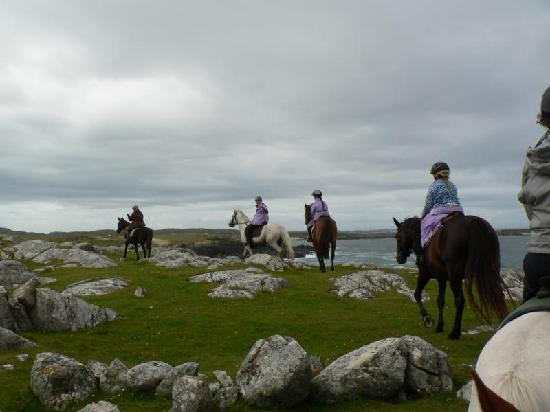 Failte Tours: Pony Trekking