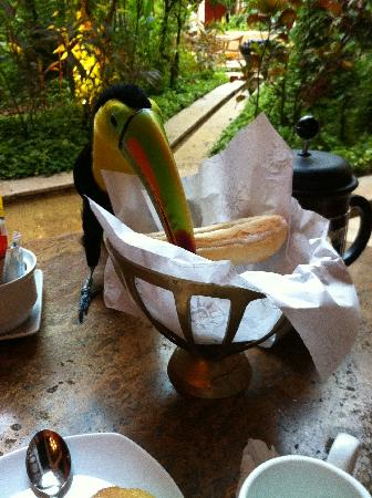 Sofitel Legend Santa Clara: Toucan eating my breakfast