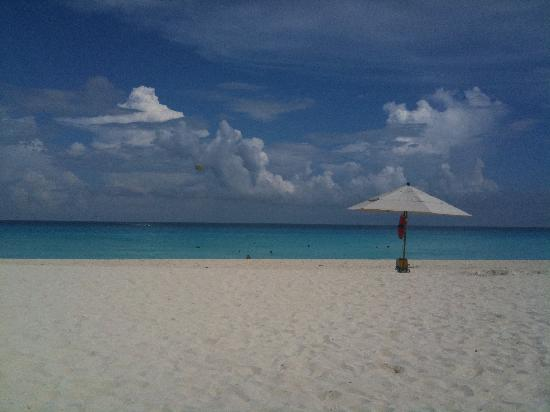 Live Aqua Beach Resort Cancun: My view every single day
