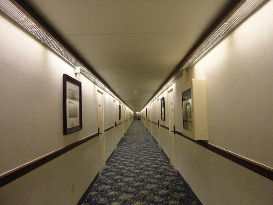 Best Western Seven Oaks Hotel: The hallway with the drop down ceiling