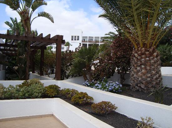 Hesperia Lanzarote: Well manicured gardens.