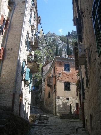 Kotor Bay Tours: Kotor castle