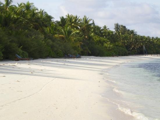 เมดุฟุชิ ไอแลนด์ รีสอร์ท: la plage cote hydravion