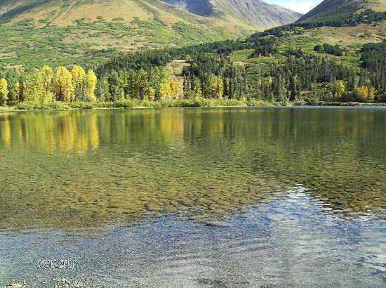 Summit Lake Lodge: fall shot of lake