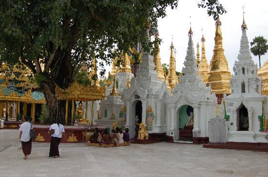 เจดีย์ชเวดากอง: pagoda