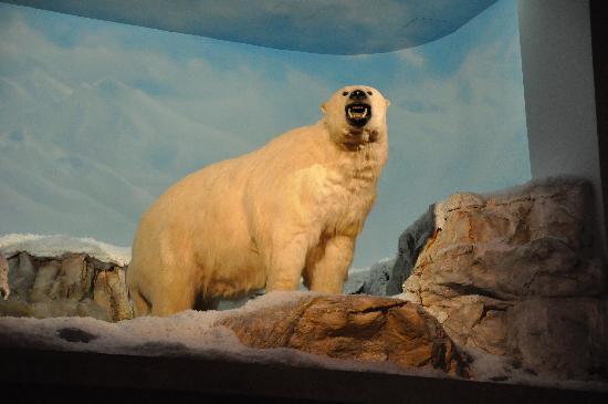Hotel Alyeska: Lobby -bear greets you