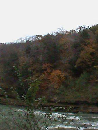 Letchworth State Park: Beautiful color
