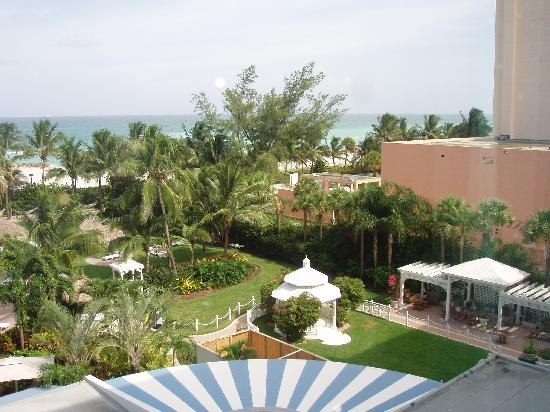 The Palms Hotel & Spa: room view