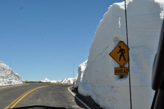Trail Ridge Road: areas with up to 25 ft. of snow