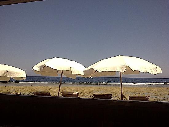 Ghazala Hotel: Beach, amazing snorkelling!