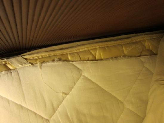 Hyatt Regency Orlando International Airport: Torn mattress pad.