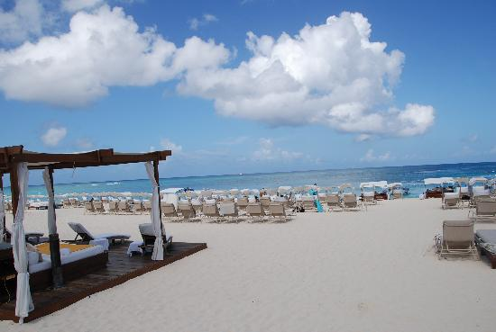 The Ritz-Carlton, Grand Cayman: Outstanding beach