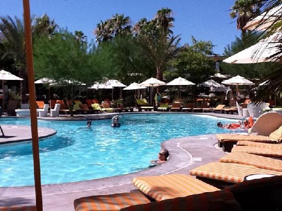 Riviera Palm Springs Resort: Main pool