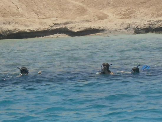 Dreams Beach Resort: Snorkeling