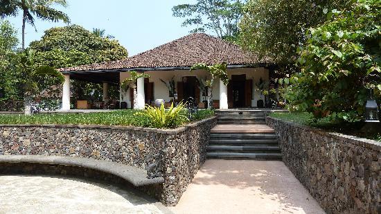 MesaStila Resort and Spa: piantagione