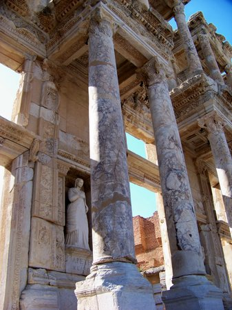 ซีลกัค , ตุรกี: Library detail