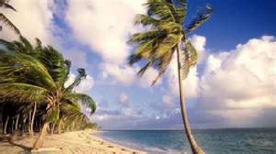 Dreams Punta Cana Resort & Spa: Unforgettable vacation