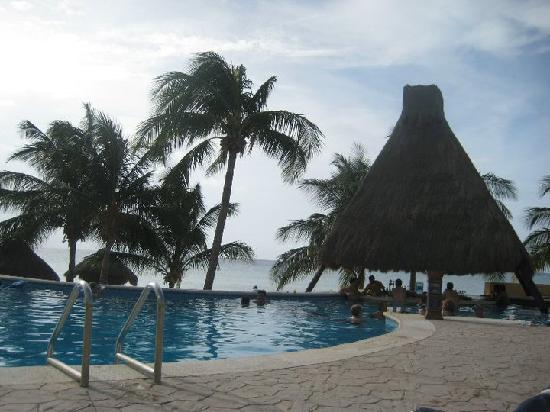 Melia Cozumel Golf - All Inclusive: Hotel pool