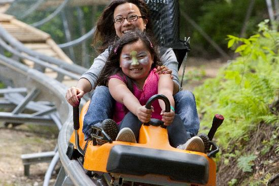Hope Lake Lodge & Conference Center: Mountain Coaster Ride
