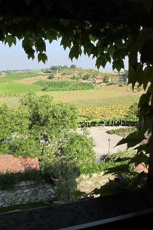 Albergo L'Ostelliere Villa Sparina Resort: Vista dalla nostra finestra