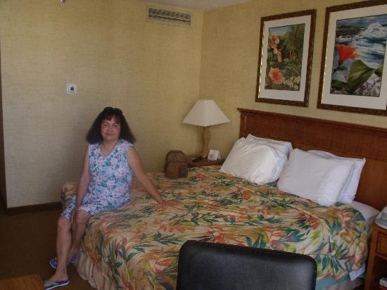 Waikiki Resort Hotel: Inside our room