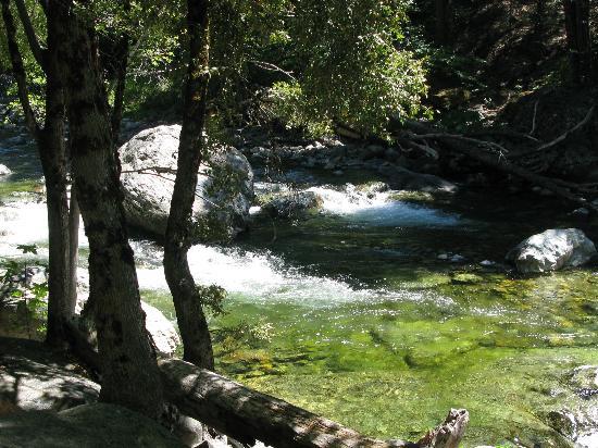 Herrington's Sierra Pines Resort: Yuba River below the rooms