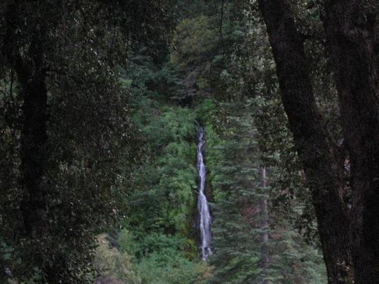 Herrington's Sierra Pines Resort: Waterfall