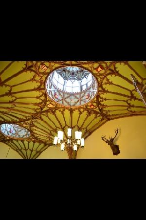 Dalhousie Castle: ceiling and bambi