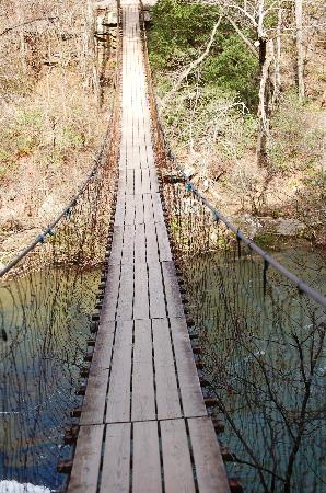 The Inn at Fall Creek Falls State Park: Pedestrian bridge on Park Trail