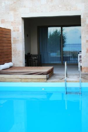 AquaGrand Exclusive Deluxe Resort: our pool suite