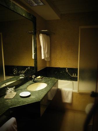 Borgo Palace Hotel: bagno