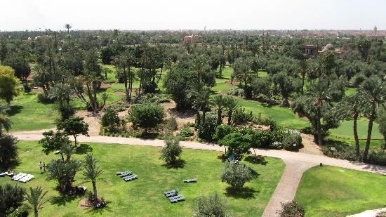 Club Med Marrakech La Palmeraie: Un spectacle féerique