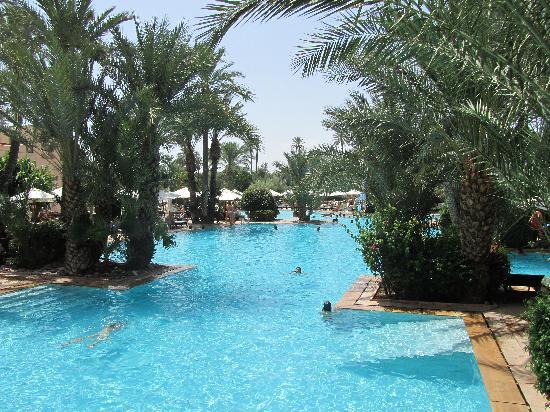 une piscine de r ve picture of club med marrakech la palmeraie marrakech tripadvisor. Black Bedroom Furniture Sets. Home Design Ideas