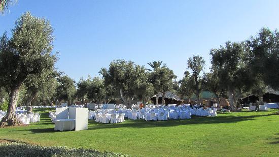 Club Med Marrakech La Palmeraie: Préparation de la soirée blanche