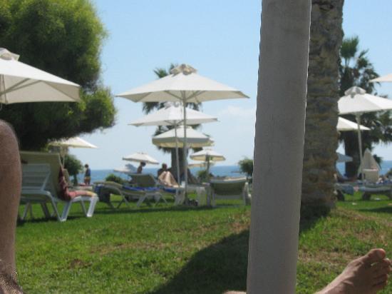 Louis Imperial Beach: GARDEN