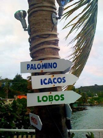 La Ola Restaurant: near by islands