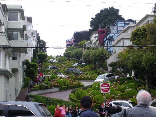 San Francisco Shuttle Tours: Lombard Street