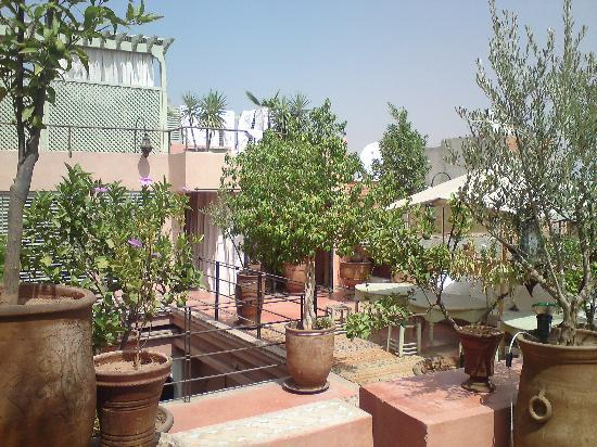 Riad Moullaoud: roof garden