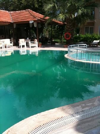 Villa Dolunay Apart Hotel: very green pool after 5 days
