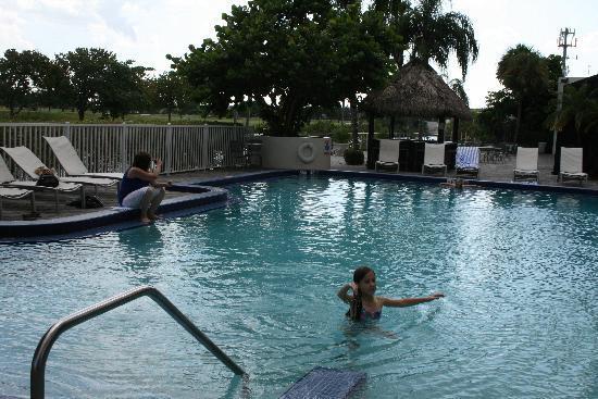 Sheraton Miami Airport Hotel & Executive Meeting Center: pool area