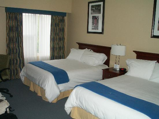 UMass Lowell Inn & Conference Center: Beds and the Window