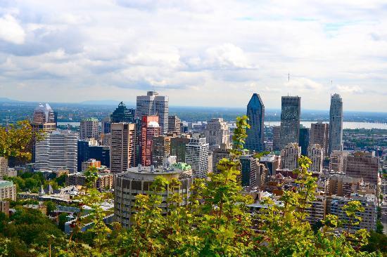 มอนต์รอแยล: A view from Mont Royal