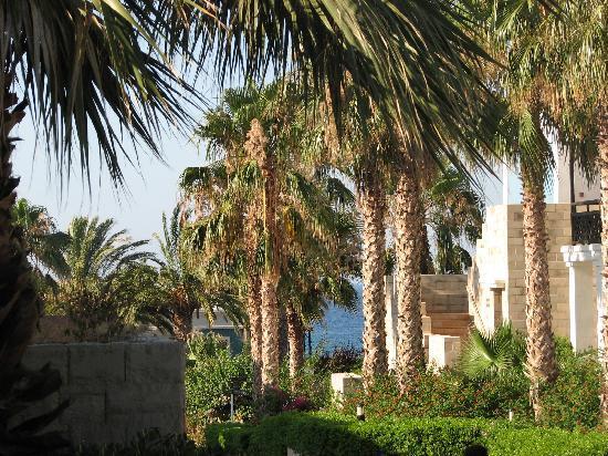 Aldemar Royal Mare Thalasso Resort: Hotel territory